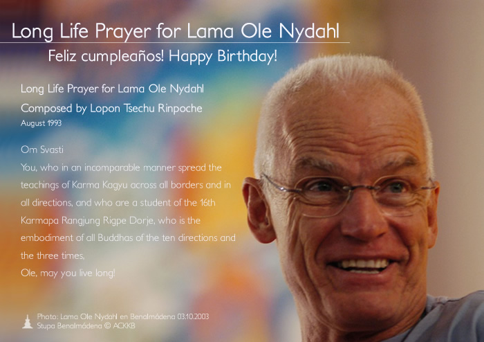 Happy Birthday Lama Ole!
