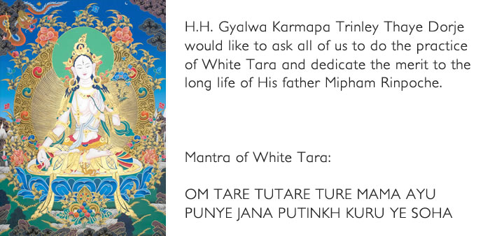 Gyalwa Karmapa ask for Mantra of White Tara